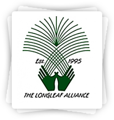 Longleaf Alliance